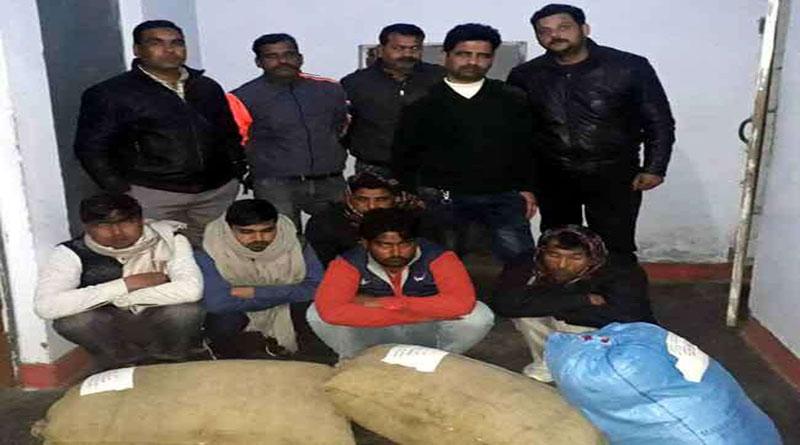 नशे की खेप लेकर देहरादून आ रहे छह आरोपियों को एसटीएफ ने किया गिरफ्तार
