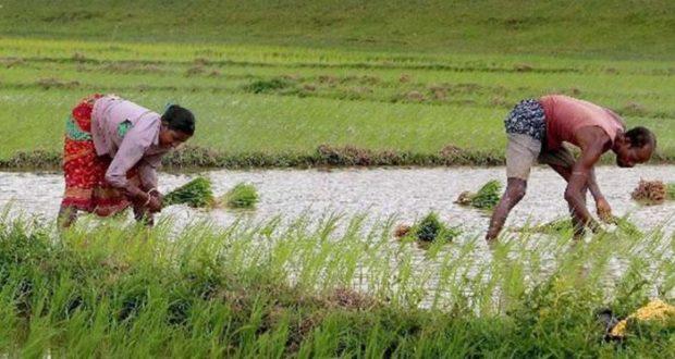 किसानों की कर्ज माफ़ी न पड़ जाए बीजेपी को भारी?