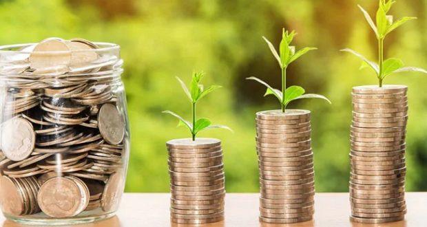 NPS और PPF हैं निवेश के लिए दो बेहतर विकल्प, जानिए किसमें मिलेगा कितना फायदा